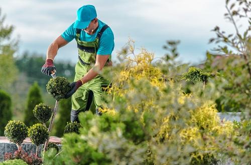 jardinier à Villefranche sur Mer
