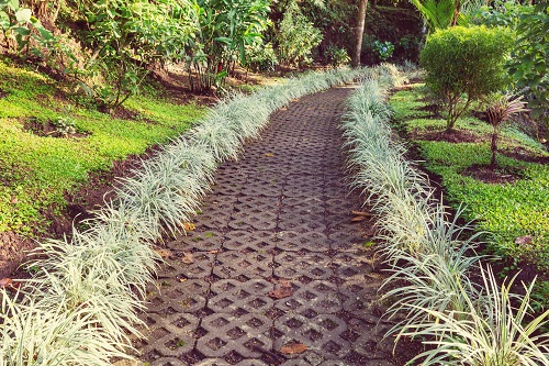 Un projet de restauration de jardin à Pergomas